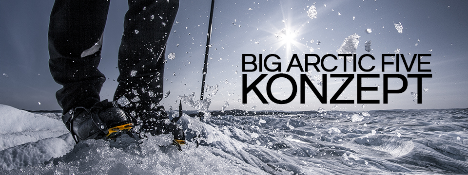 The Big Arctic Five-Konzept